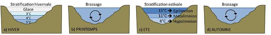 Cycles saisonniers d'un lac dimictique : cas du lac d'Anterne 2 périodes de brassage succèdent aux régimes de stratification. Source : Rosalie BRUEL, 2014