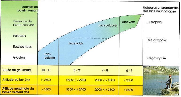 Schéma d'interprétation de la typologie des lacs de montagne français (D'après Martinot et Rivet, 1985)